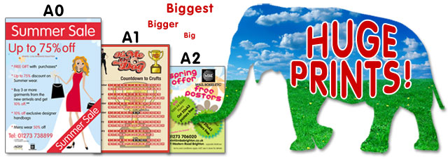 Poster Printing Large Format Print Image